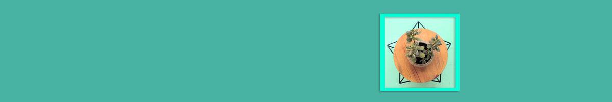 custom_design_product_banner